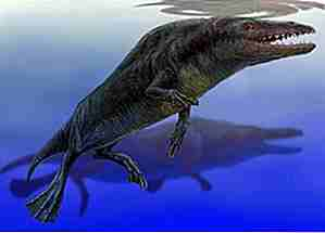 25 Strangest Prehistoric Creatures To Rule Earth