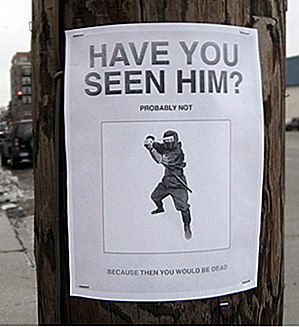 25 Brilliantly Hilarious Street Flyers