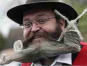 25 Top Craziest Beards Ever