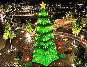 Weihnachtsbaum Natürlich.25 Der Schönsten Und Ursprünglichsten Weihnachtsbäume Der Welt De